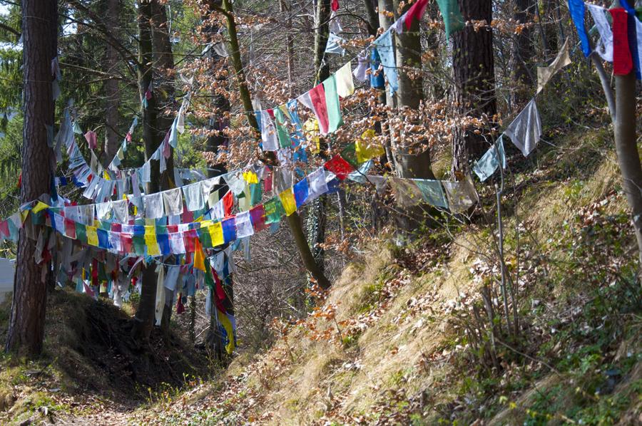 Tibetische Gebetsfahnen in der Nähe des Klosters