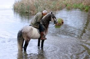 Reiter flüstert seinem Pferd etwas zu