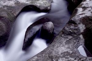Am Schwarzwasser lässt sich gut fotografieren, zu jeder Jahreszeit.