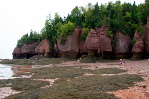 Ebbe beim Hopewell Rock, man kann auf dem Ozeanboden umherlaufen