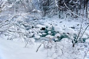 Die Sihl im Winter