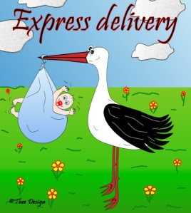 ExpressDelivery