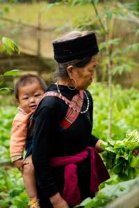 Hmong_4