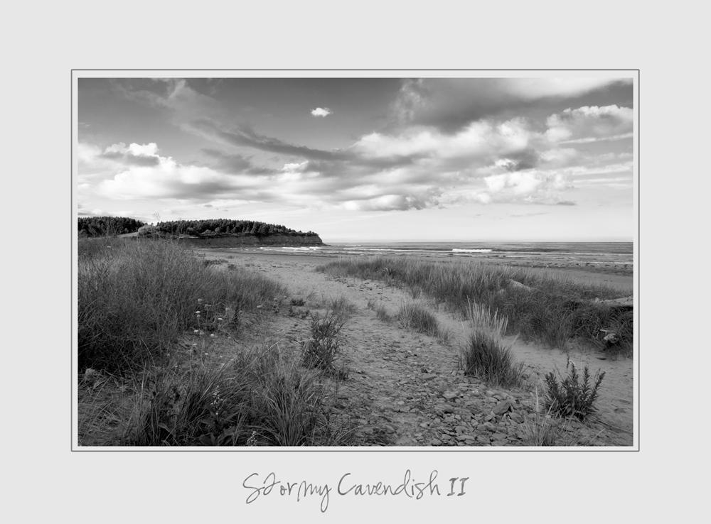 Stormy Cavendish