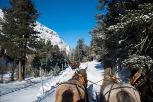 Pferdekutschen im Rosegtal